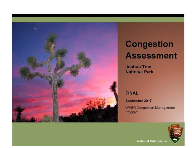 Report cover with a sunset behind a majestic Joshua Tree
