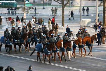 Horse Mounted Unit United States Park Police U S