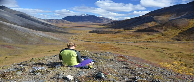 Artist paints amidst vast tundra wilderness.