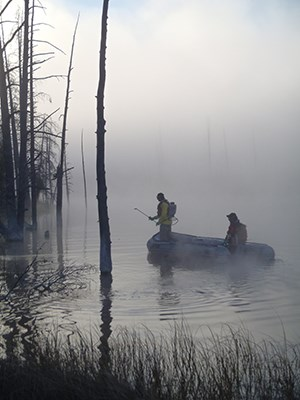 Fisheries staff conduct electroshock fishing operations in Goose Lake on a foggy morning.