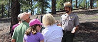 A park ranger gives a program to a group of visitors surrounded by tall pine trees.