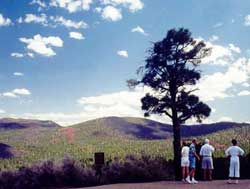 Visitors admiring view from overlook