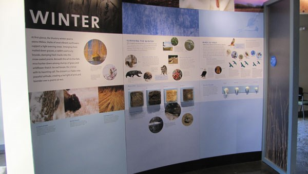 exhibits inside the visitor center