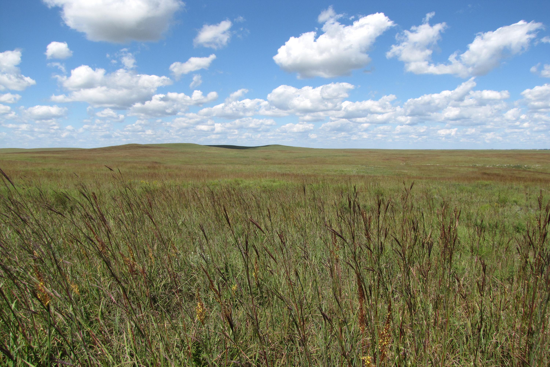 Tallgrass Prairie Nati...