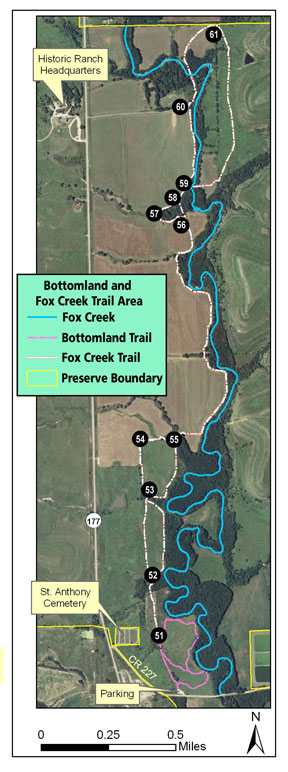 Fox-Creek-Trail-with-Markers