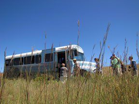 bus tour and tall grasses in the fall