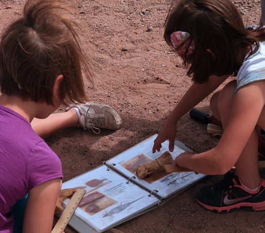 Students Participate in Simulated Fossil Dig