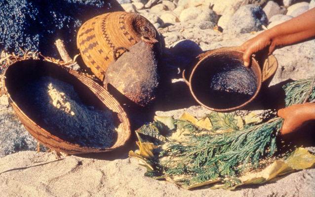 Native American baskets from Sequoia and Kings Canyon National Parks