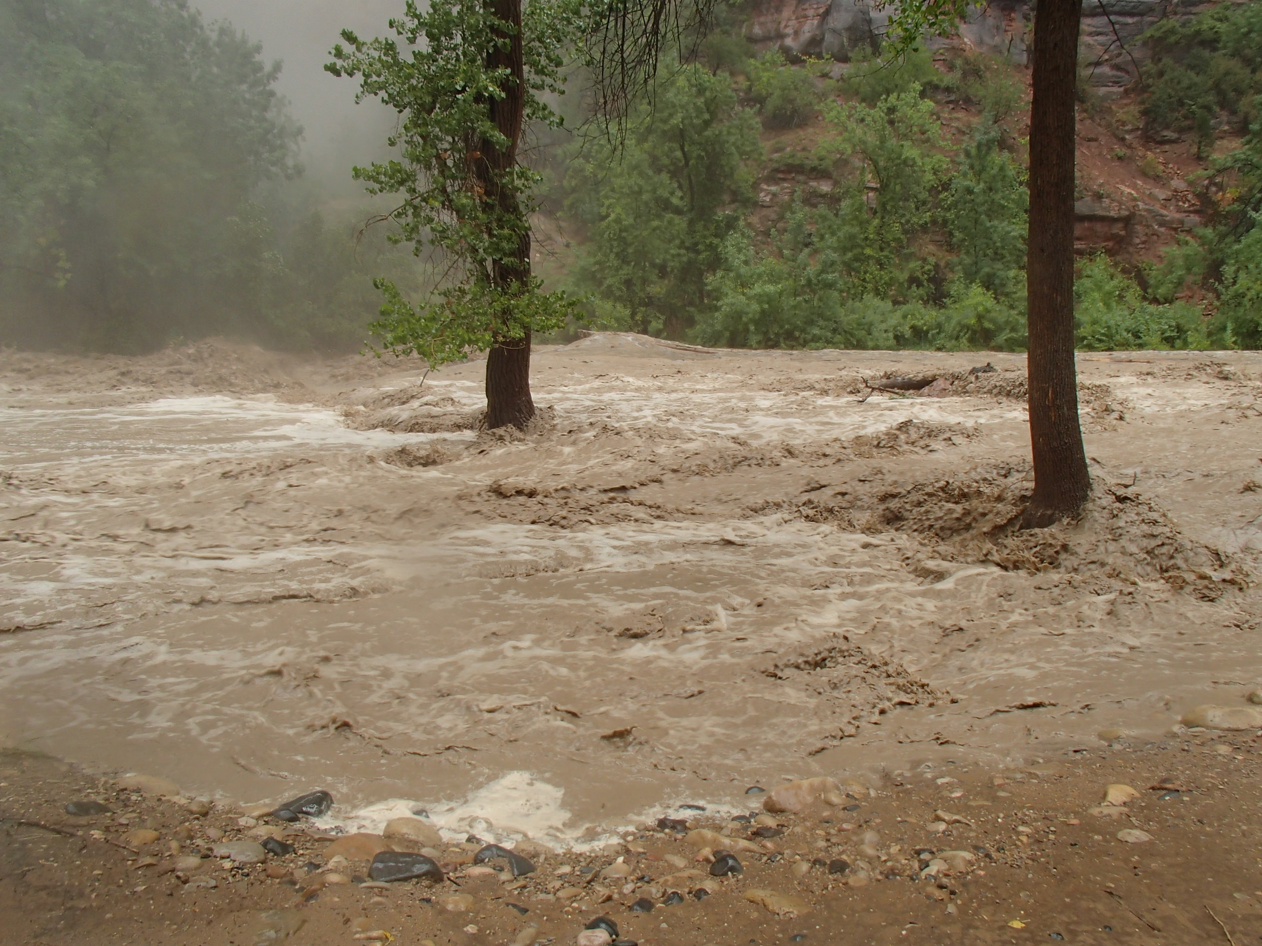 Flash flood in Zion National Park