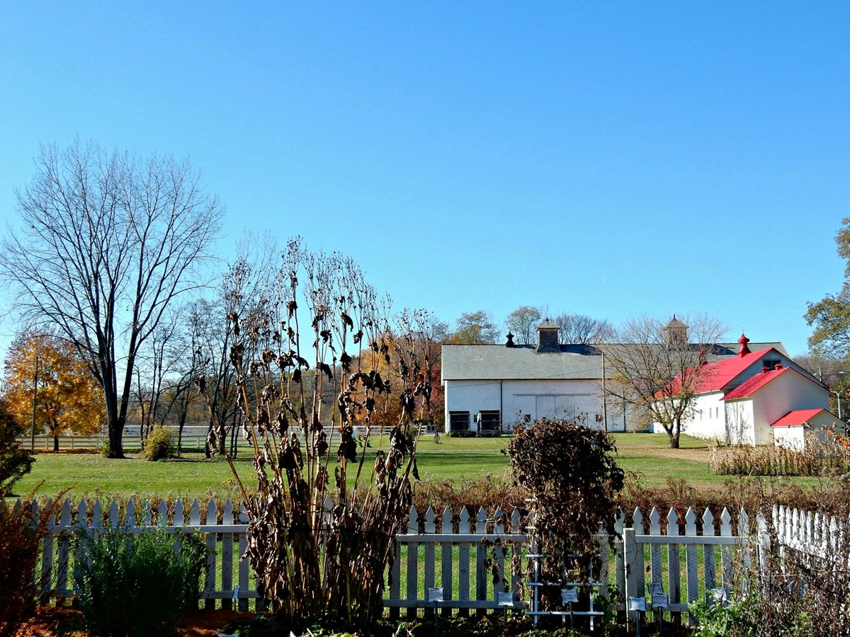 looking from a fenced in herb garden towards a large white barn