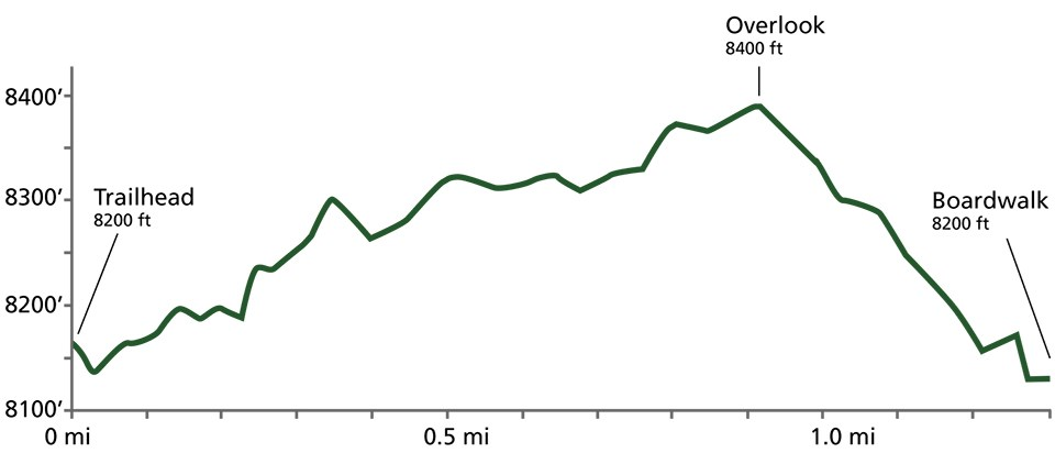 A line chart showing trail elevation over distance. The line rises jaggedly to an overlook and then drops quickly to a boardwalk.
