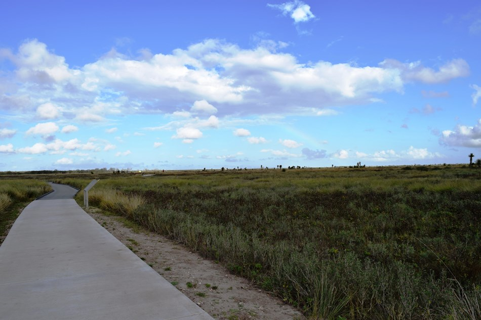 Paved trail leading onto the green coastal prairie