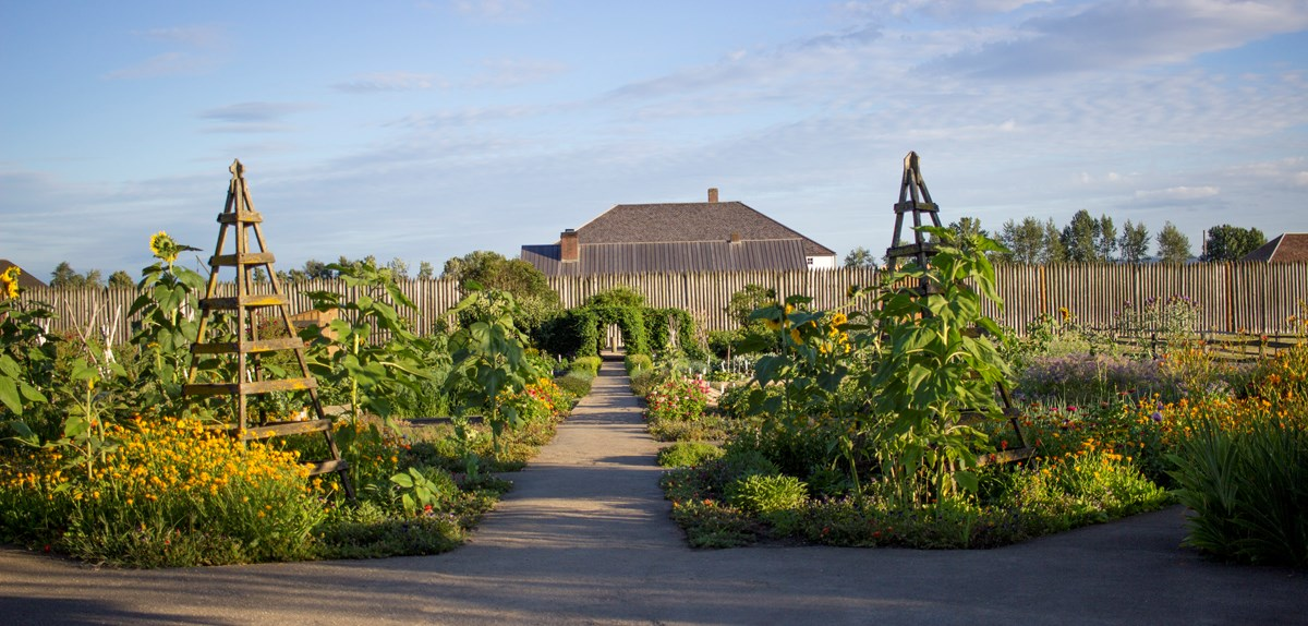 A view of Fort Vancouver through the fort's garden