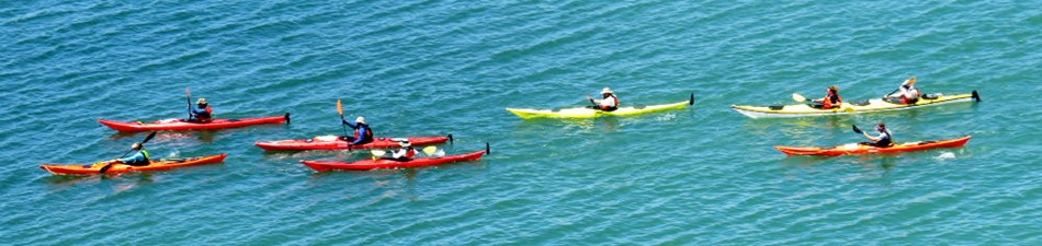 Kayakers paddle in the sound.