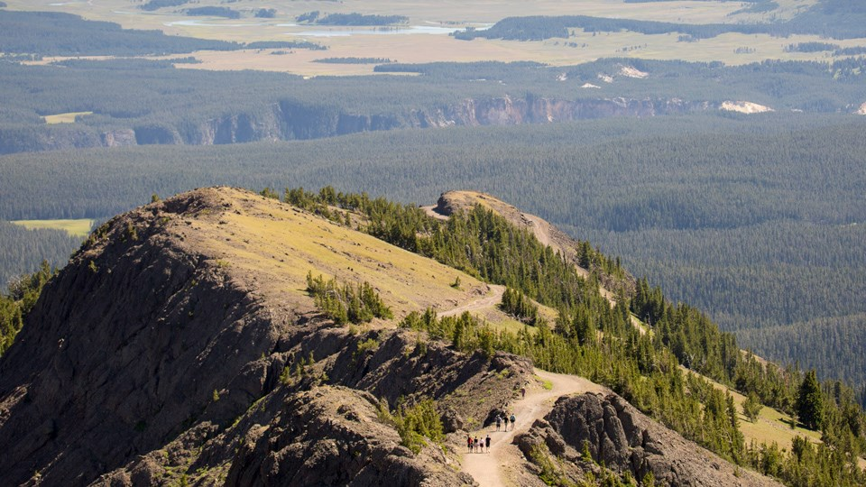 Hikers ascend Mount Washburn along a bare ground trail along a ridgeline.