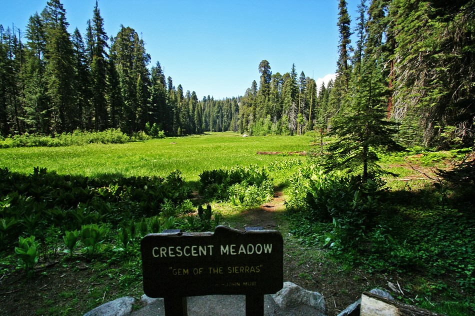 "A sunny meadow lies beyond a wooden sign that says ""Crescent Meadow"" and the John Muir quote ""Gem of the Sierras."""