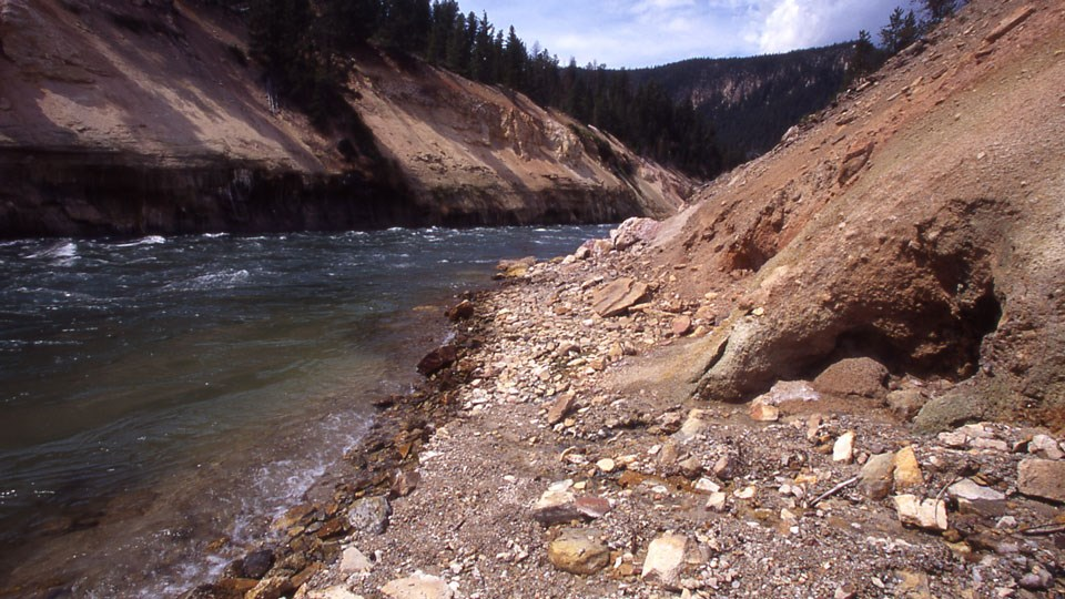 The Yellowstone River rushes through a yellow wall canyon.