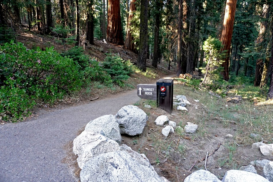 A trailhead sign at the edge of a paved path