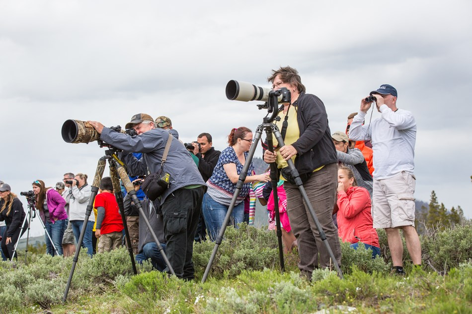 A group of people with long camera lenses focus on something in the distance.