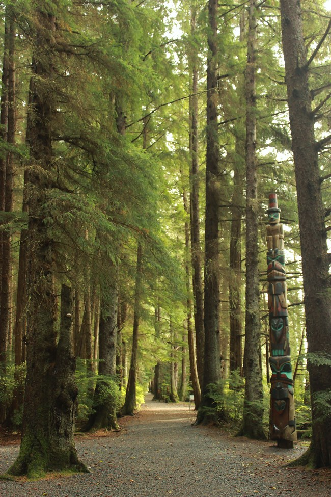 A view down totem trail, lined with tall trees and a totem pole on the right.