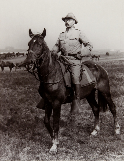 Image result for teddy roosevelt rough riders