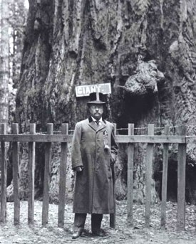 TR at Yosemite
