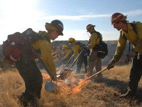 Firefighters setting a prescribed fire
