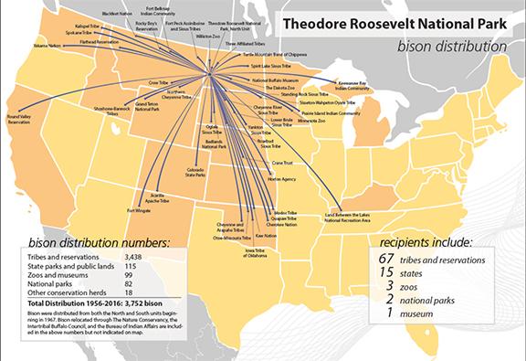 Bison Management Theodore Roosevelt National Park US National