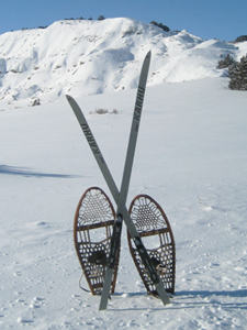 Skis & Snowshoes