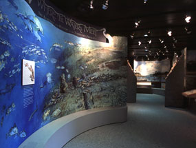 Timucuan Preserve Visitor Center exhibits photograph