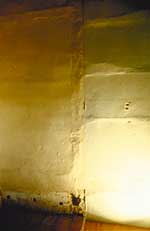 Imperfections revealed in a raking light across a plaster wall. Photo: Travis C. McDonald, Jr.