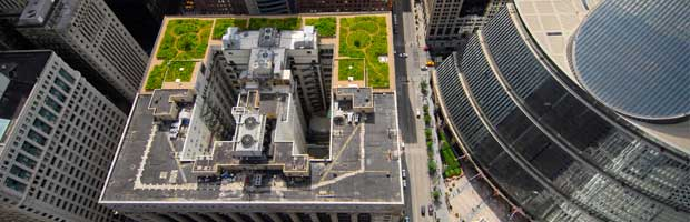 Green Roof Summary Technical Preservation Services National Park Service