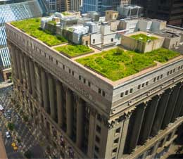 Aerial View Of Chicago City Hall Green Roof