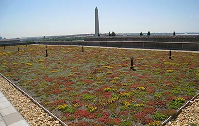roof garden guidelines Turas green roof design guidelines: maximising ecosystem service provision  through  generally they have the appearance of 'roof gardens' typically they.