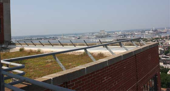 Green Roofs Visual Impact Technical Preservation Services
