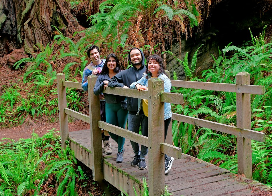 Four adults stand on a hikers' bridge in a redwood forest.