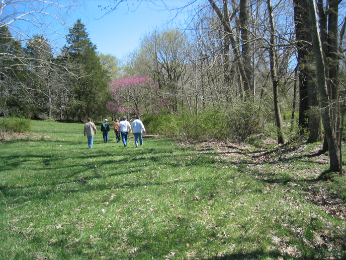5 people walking a grass path surrounded by trees