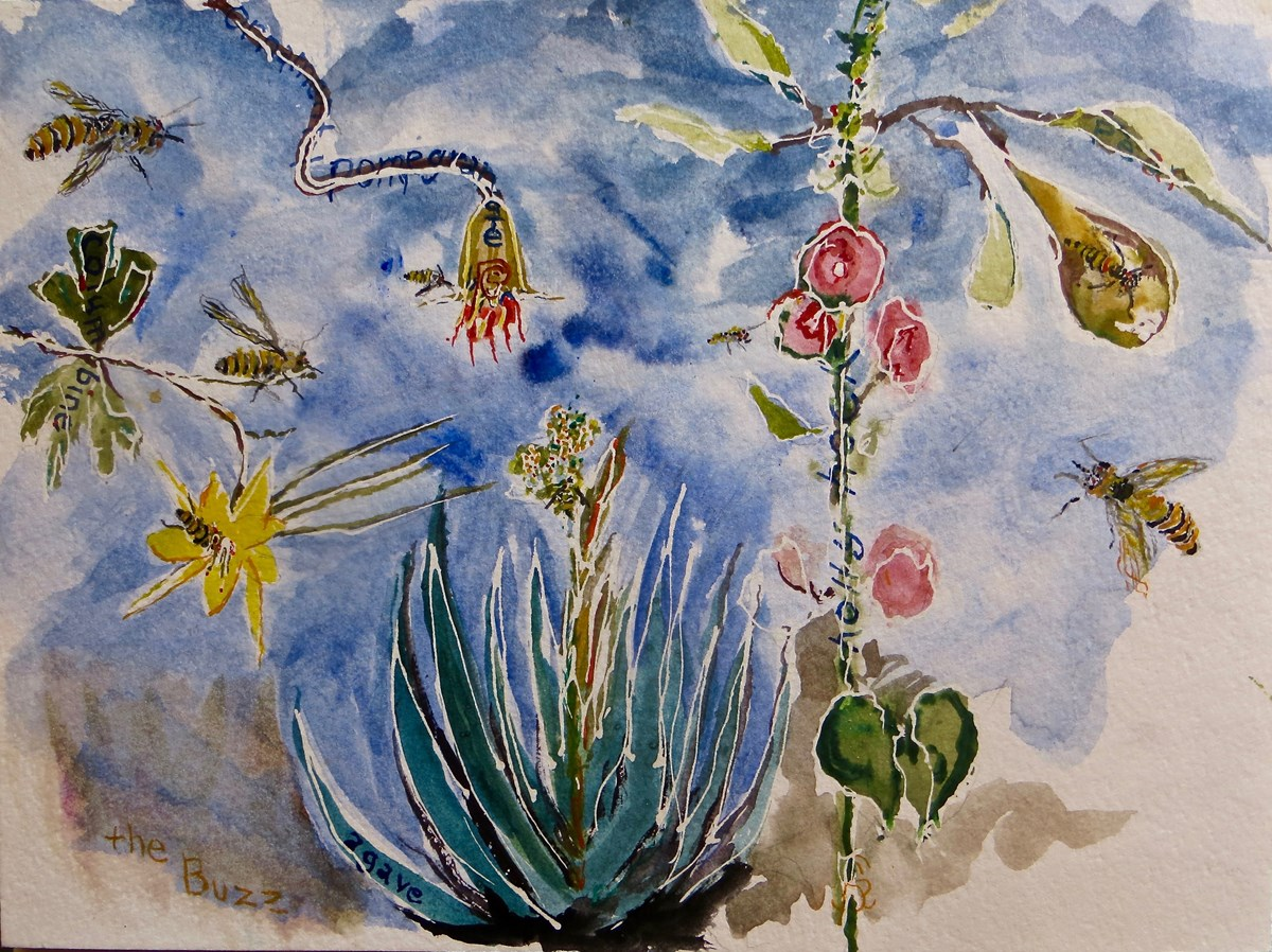 Watercolor painting of desert plants and insects.