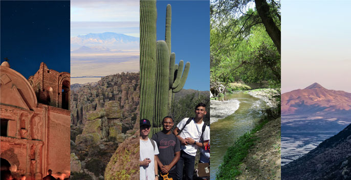 collage of national park environments including saguaro, landscape, river, mission