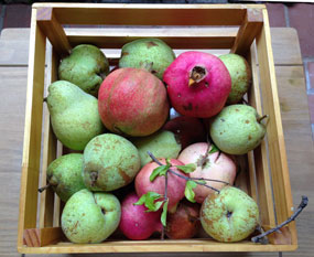 crate of fruit including pears and bright red pomegranate