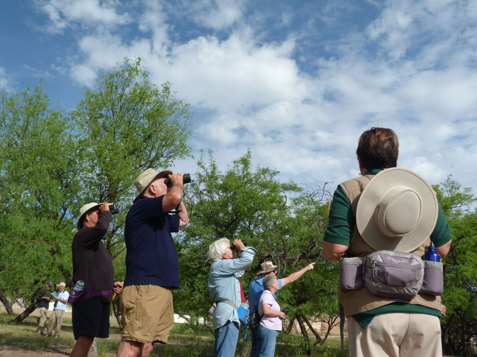 visitors with binoculars looking and pointing at the sky