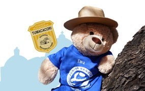 teddy bear with junior ranger badge, hat, shirt