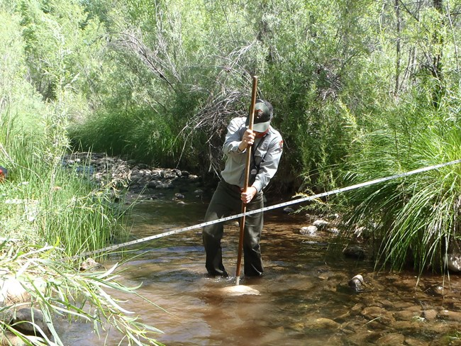 Man with pole stands in shallow stream behind transect tape