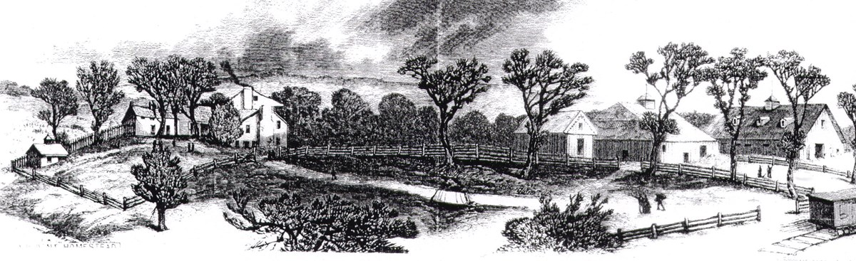 Black and white panoramic drawing of the White Haven estate, including the main house and several outbuildings.