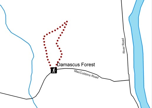 Damascus Forest Trail map