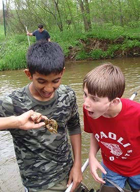 Two young volunteers with the Valley Forge Crayfish Corps inspect a crayfish they have caught for markings.
