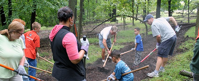 Volunteers spread mulch in a forest.