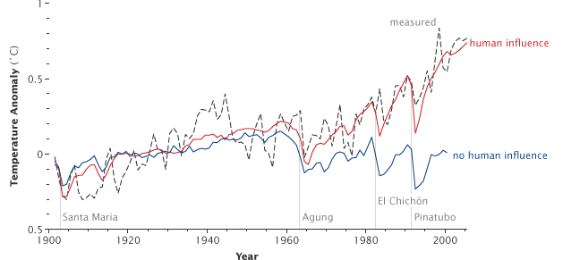Reconstructions of global temperature that include greenhouse gas increases and other human influences.