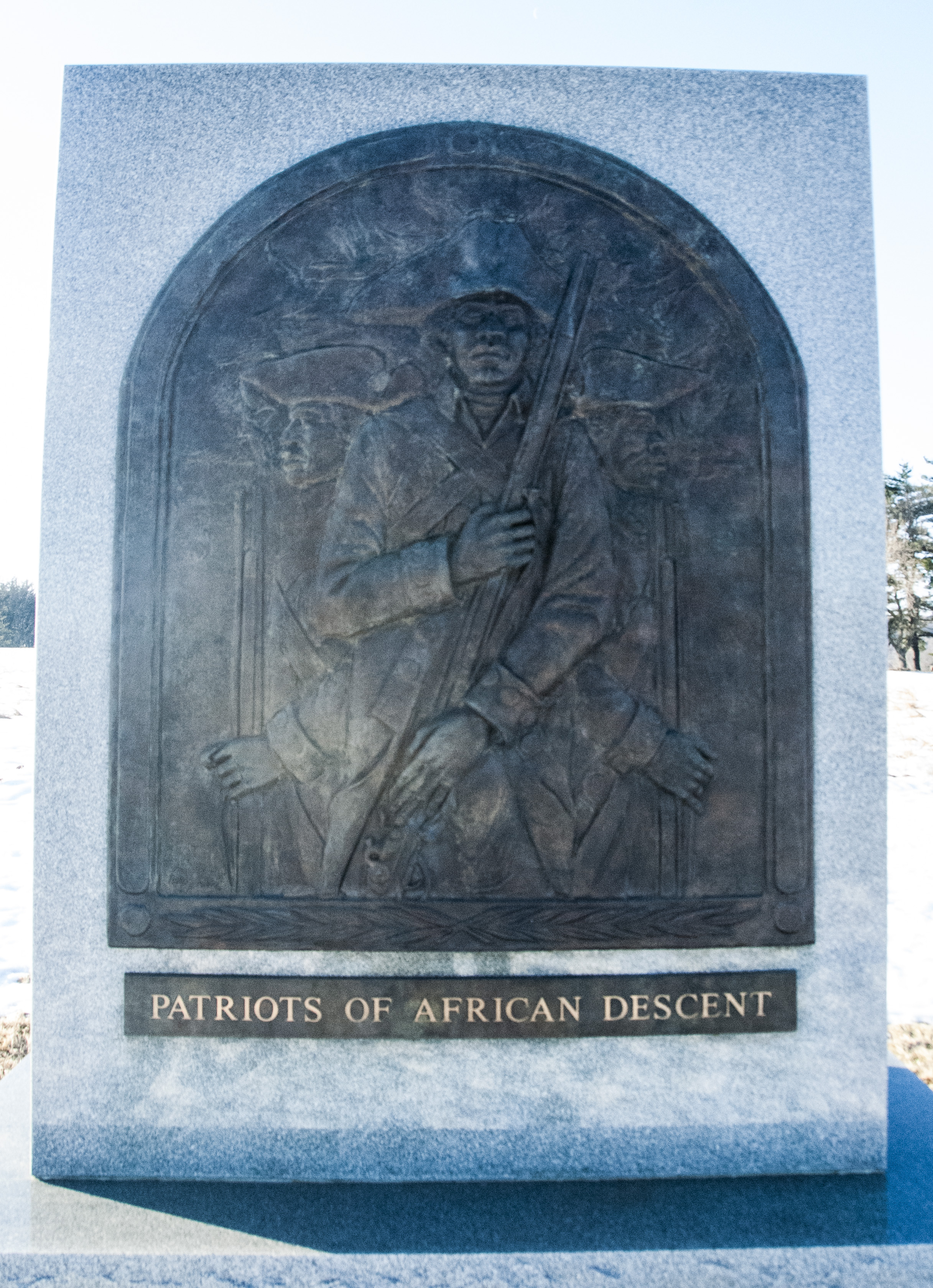 Patriots of African Descent Front Panel