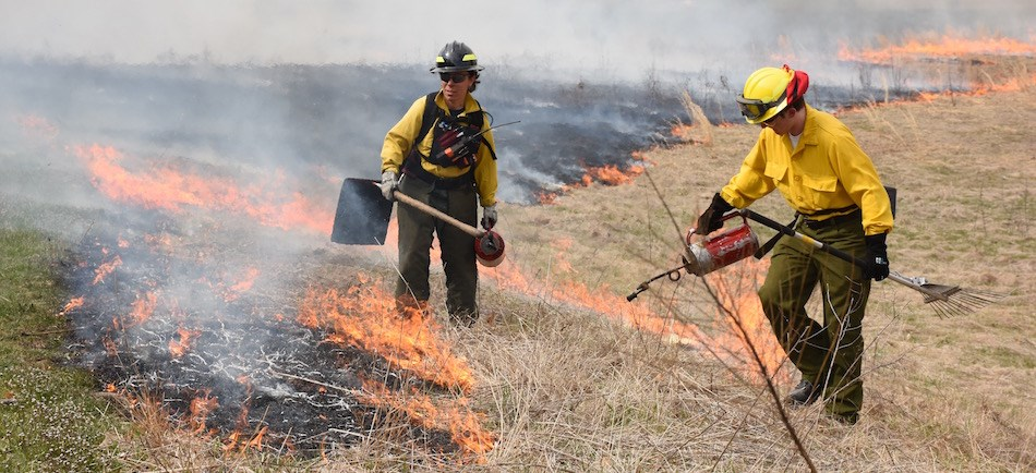 Wildland Firefighters conduct prescribed fire